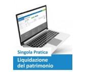Liquidazione del Patrimonio...